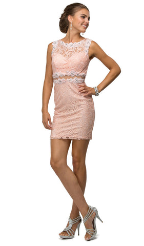 Sheer Lace Appliqued Sheath Homecoming Dress