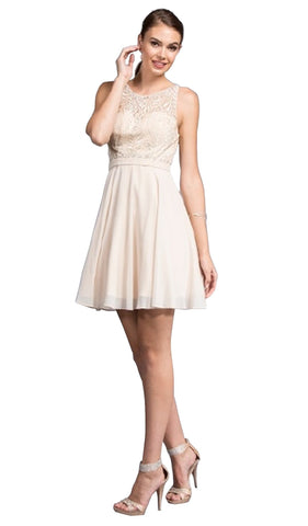 Embellished Sheer Bateau A-line Homecoming Dress