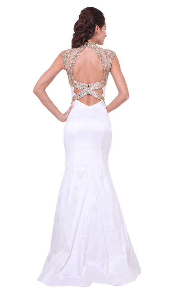 Embellished Sheer High Neck Fitted Evening Gown