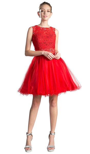 Sleeveless Lace Bodice Tulle A-Line Cocktail Dress