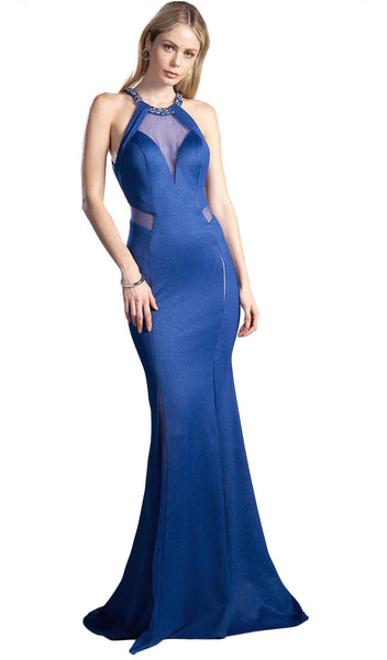 Sheer Halter Fitted Trumpet Evening Dress