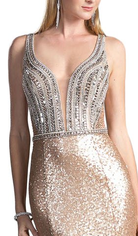 Embellished Sheer Back Evening Dress