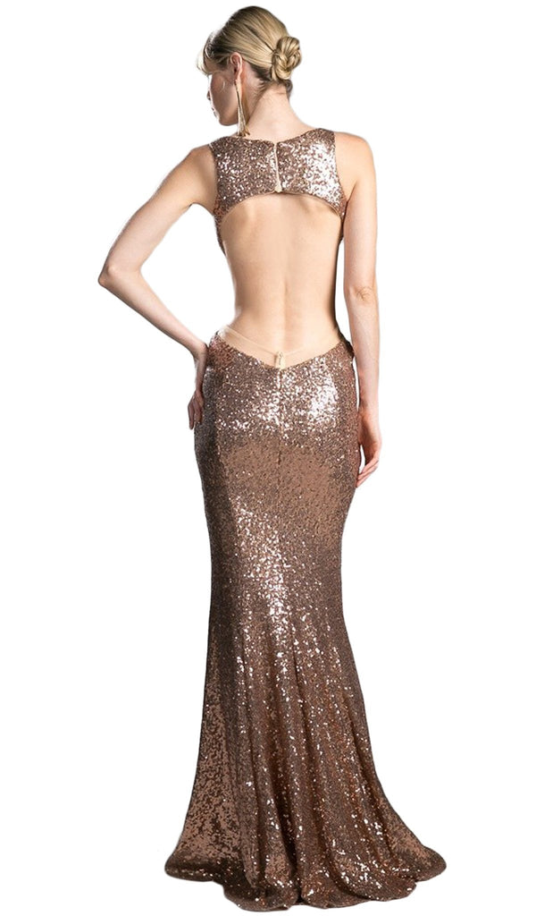 Sequined Plunging Fitted Evening Gown
