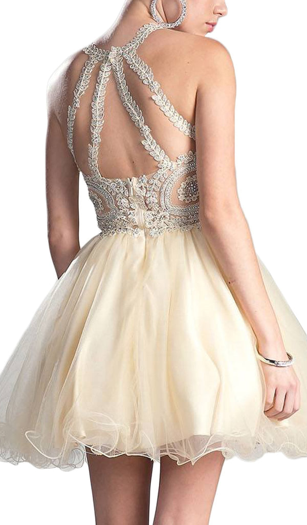 Lace Appliqued Strappy Back Cocktail Dress