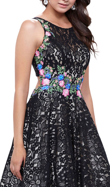 Sleeveless Embroidered Lace Scoop A-line Dress