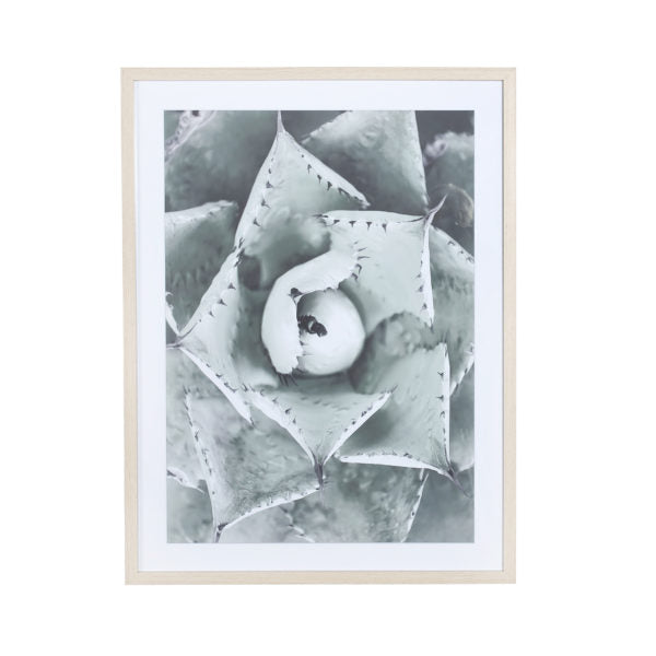 Glass with Wood Frame Bloom D Wall Decor