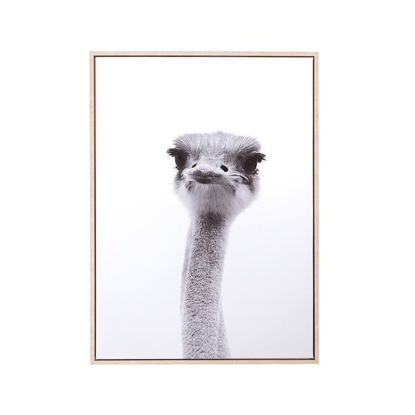 Canvas Wall Decor - Ostrich