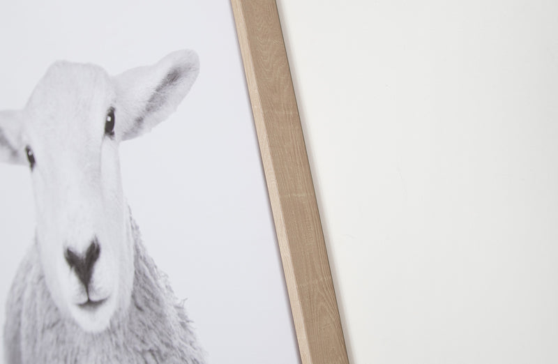 Canvas Wall Decor - Sheep
