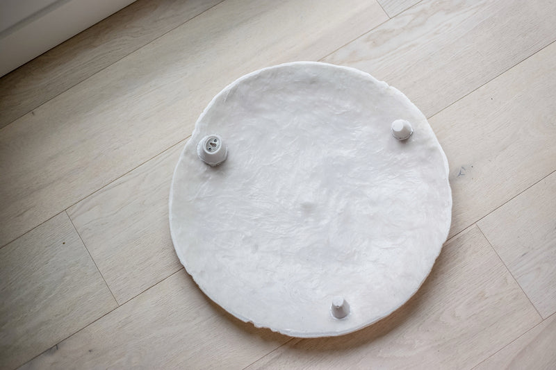Resin Sand Dollar Wall Hanging