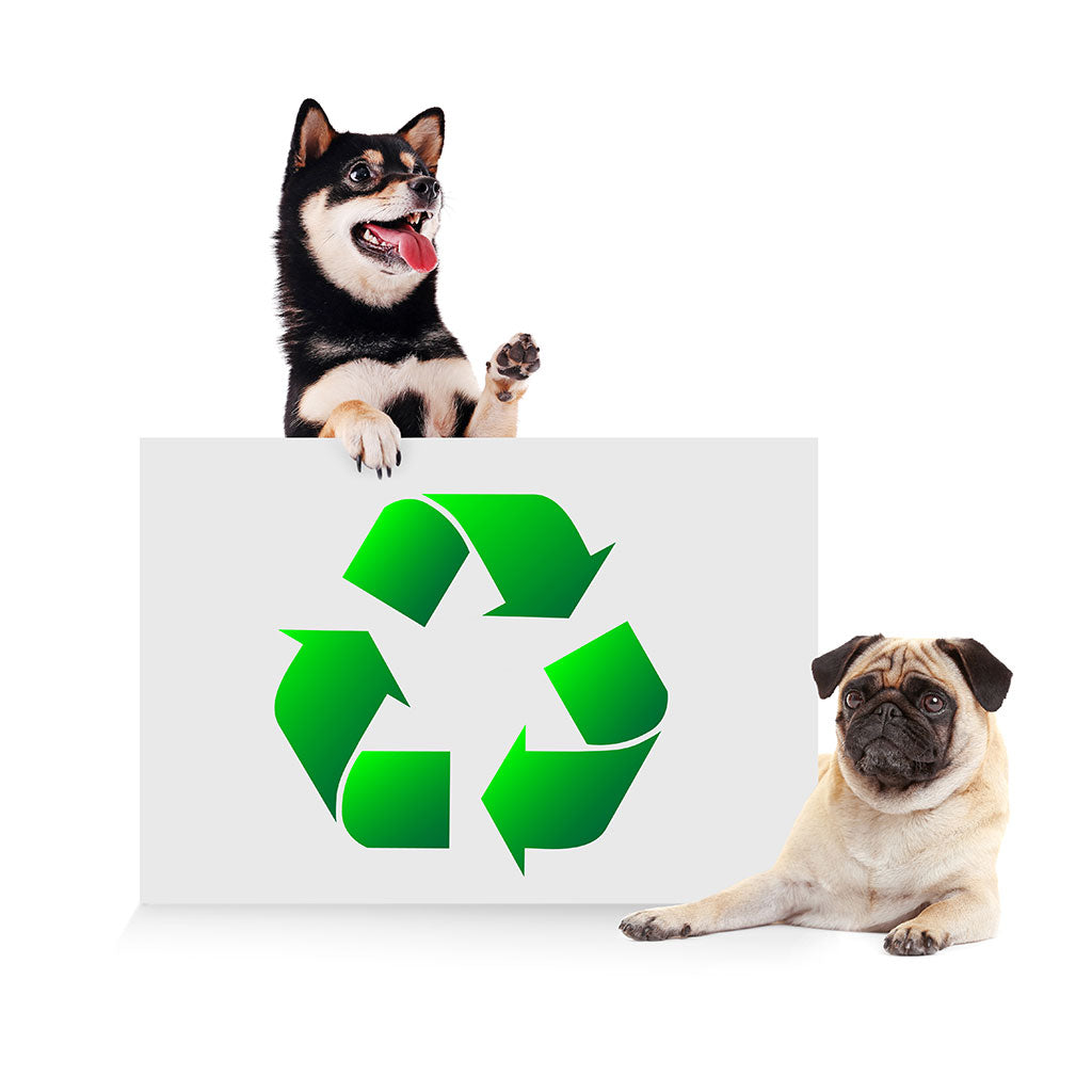 Reduce, Reuse, Rewoof with Planet Dog