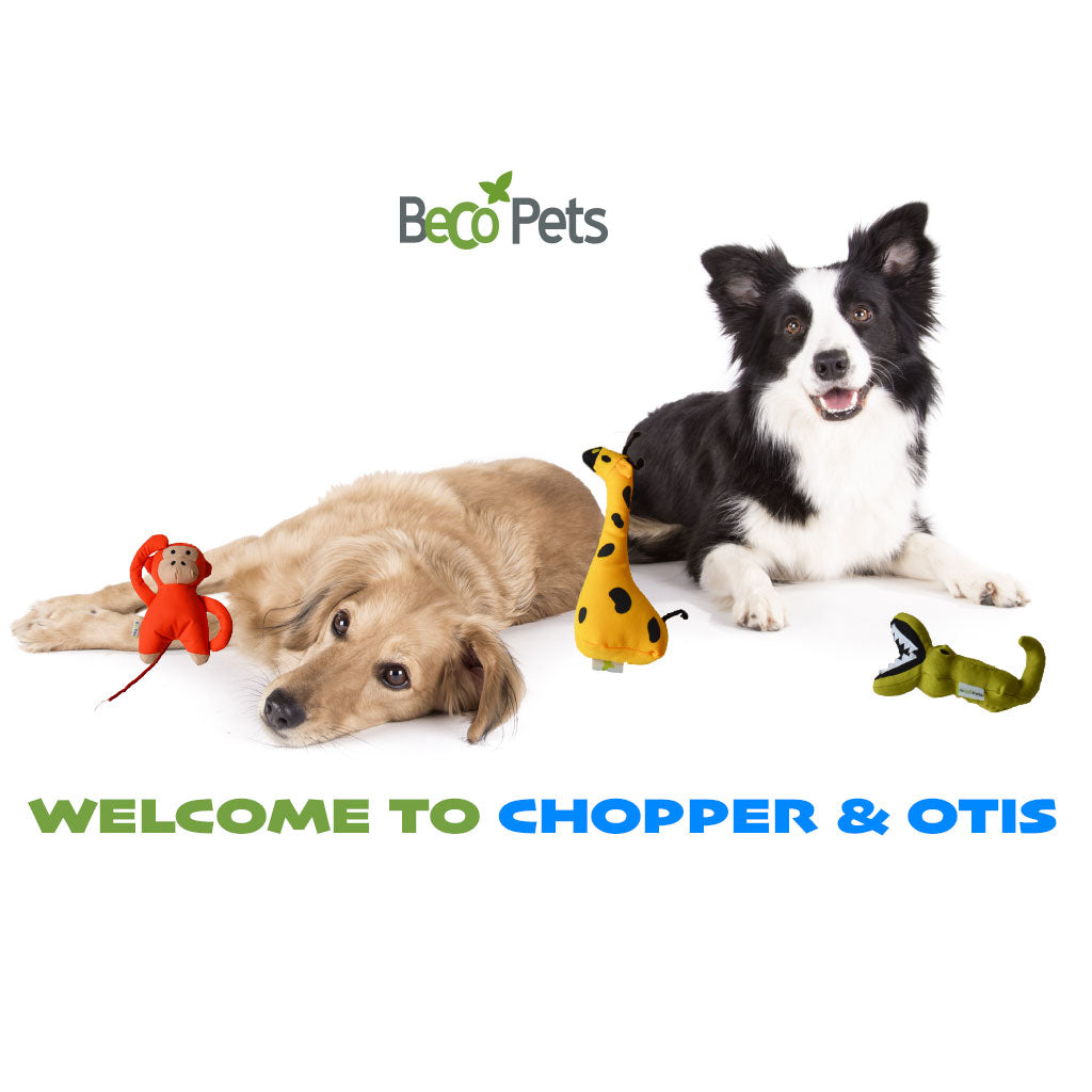 Jolly, Good, and Jolly Good: Beco Pets Ethical Toys