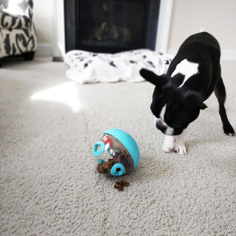 Chopper & Otis: PLAY Wobble Ball Interactive Dog Toy
