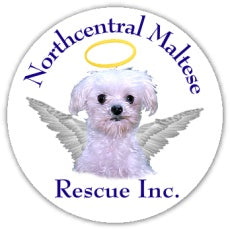 Northeast Maltese Rescue