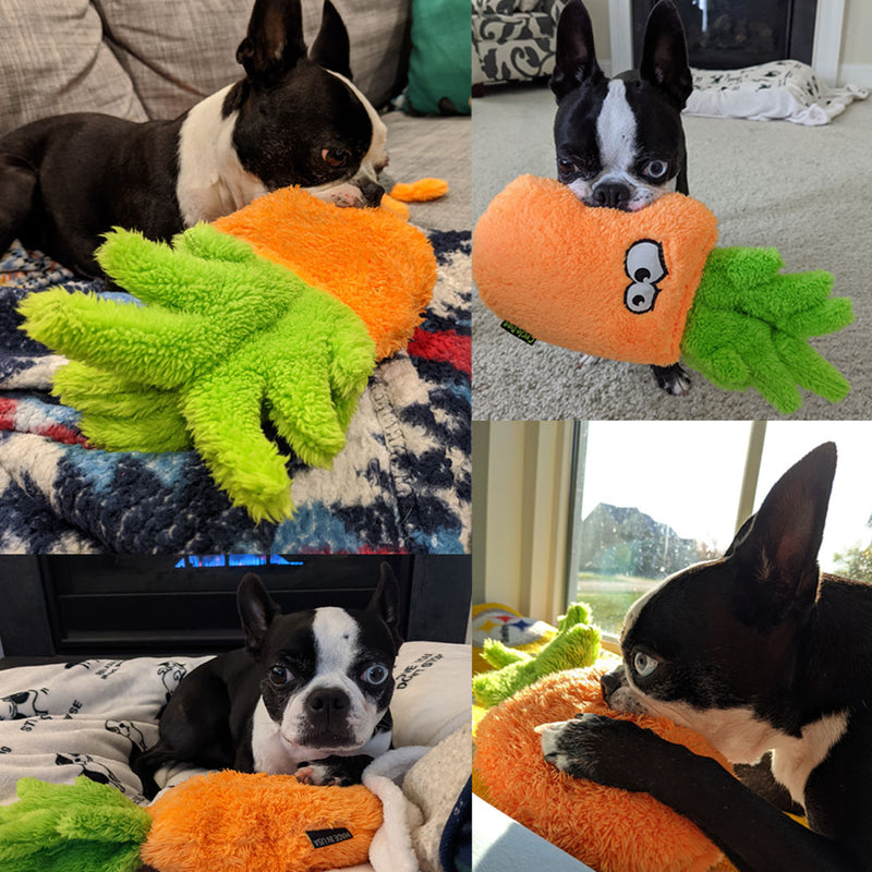 Chopper & Otis: Cycle Dog: Duraplush Pineapple Soft Dog Plush Toy