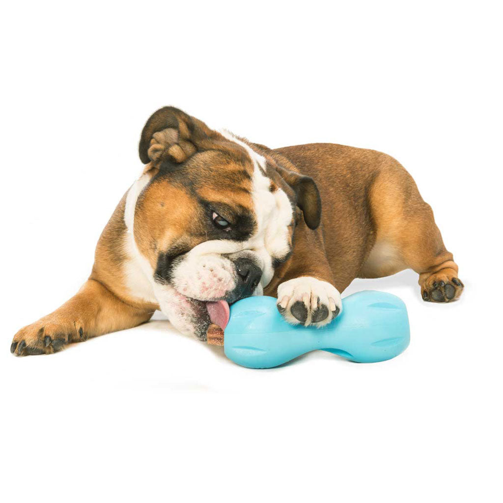 Chopper & Otis - West Paw Qwizl Treat Toy