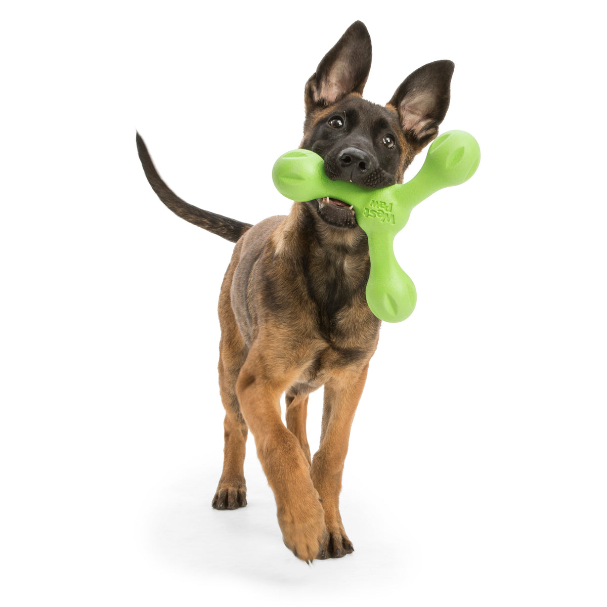Chopper & Otis West Paw ZogoFlex Echo Skamp Fetch Tug Toy