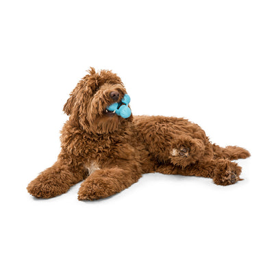 Chopper & Otis - West Paw Tux Treat Toy