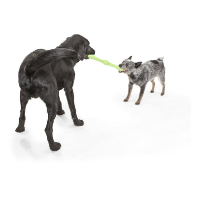 Chopper & Otis: West Paw Zogoflex Echo Zwig fetch toy