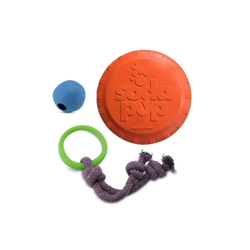 Ball, Hoop on Rope & Flyer Bundle