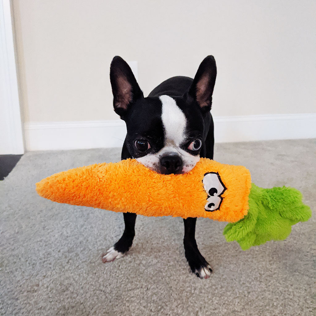 Chopper & Otis: Cycle Dog Duraplush Carrot Dog Plush Toy