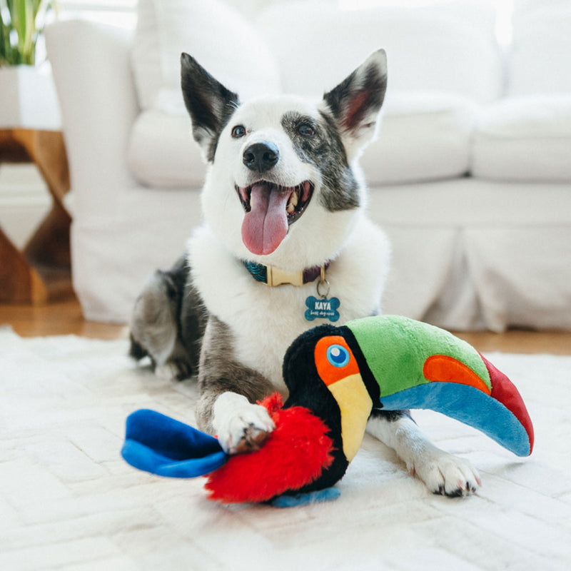 petPlay Fetching Flock Tito the Toucan