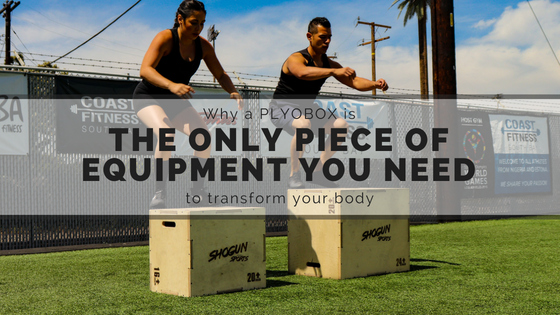 Why a PlyoBox is the only piece of equipment you need to transform your body?