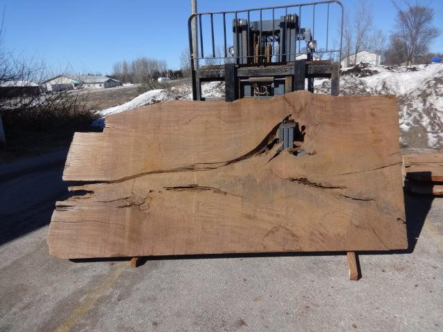 "Ipe / Brazilian Walnut #3731 - 2-1/2"" x 45"" to 60"" x 120"" FREE SHIPPING within the Contiguous US. - Big Wood Slabs"