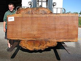 "Quaruba #2295- 2-1/4"" x 35"" to 61"" x 100"" FREE SHIPPING within the Contiguous US. - Big Wood Slabs"
