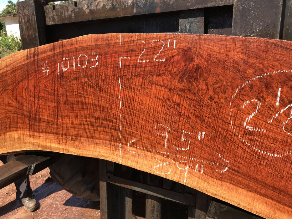"Jatoba / Brazilian #10103 –2-1/8″ x  22″ to 23"" x  89"" to 95"" FREE SHIPPING within the Contiguous US. - Big Wood Slabs"