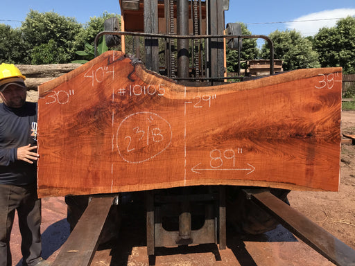 "Jatoba / Brazilian #10105 –2-3/8″ x  29″ to 40""  x  89"" FREE SHIPPING within the Contiguous US. - Big Wood Slabs"