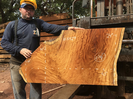 "Garapa, #10129 - 2-1/4"" x  10"" to 24"" x  43"" FREE SHIPPING within the Contiguous US. - Big Wood Slabs"