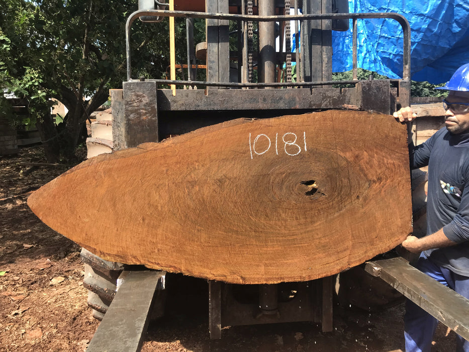 "Ipe / Brazilian Walnut #10181 - 2-5/8"" x 10"" to  29""  x 66"" FREE SHIPPING within the Contiguous US. - Big Wood Slabs"