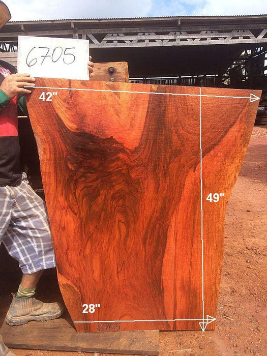 "Jatoba / Brazilian Cherry - 2-1/2"" x 28"" to 42"" x 49"" - Big Wood Slabs"