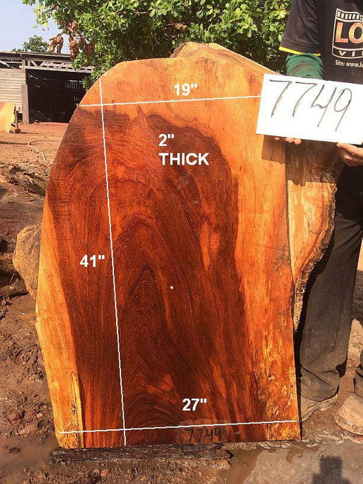 "Jatoba-Brazilian Cherry - 2"" x 19"" to 27"" x 41"" - Big Wood Slabs"