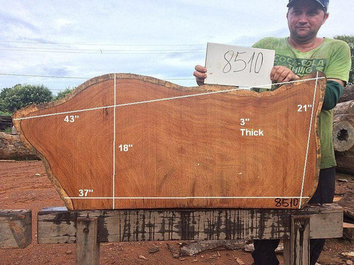 "Garapa - 3"" x 18"" to 21"" x 43"" - Big Wood Slabs"