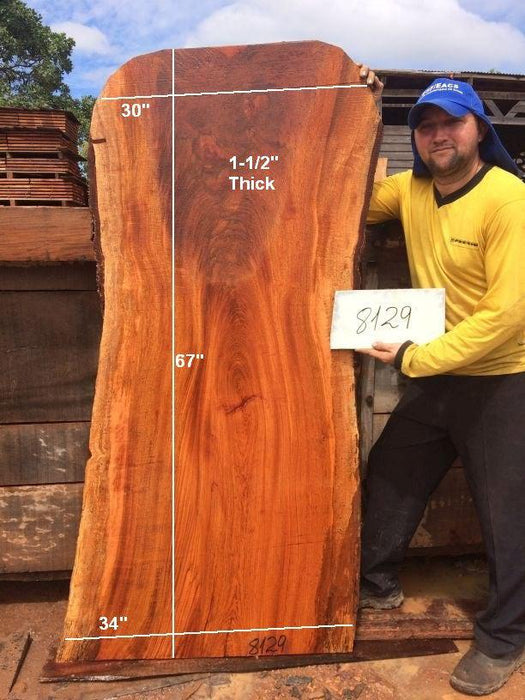 "Jatoba / Brazilian Cherry #8129- 1-1/2"" x 30"" to 34"" x 67"" FREE SHIPPING within the Contiguous US. - Big Wood Slabs"