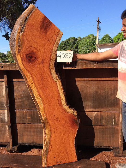 "Cumaru / Brazilian Teak - 2-1/2"" x 13"" to 17"" x 70"" - Big Wood Slabs"