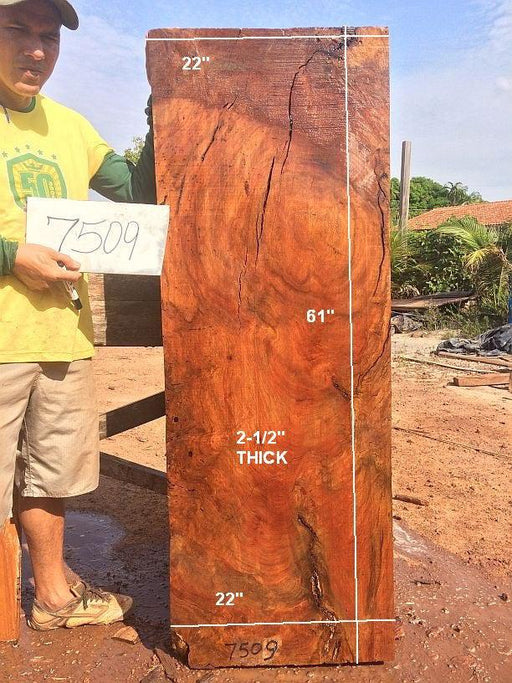 "Quaruba - 2 1/2"" x 22"" x 61"" - Big Wood Slabs"