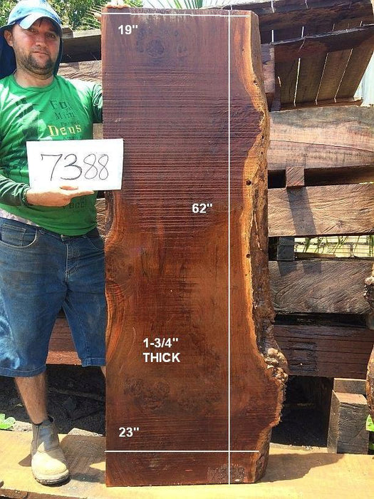 "Ipe / Brazilian Walnut #7388 - 1-3/4"" x 19"" to 23"" x 62"" FREE SHIPPING within the Contiguous US. - Big Wood Slabs"