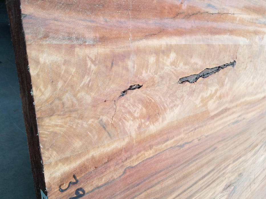"Goncalo Alves / Tigerwood - 2-3/4"" x 46"" to 56"" x 117"""