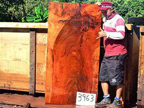 "Jatoba / Brazilian Cherry - 2-1/2"" x 33"" x 63"" - Big Wood Slabs"