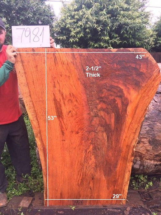 "Jatoba / Brazilian Cherry #7981 - 2-1/2"" x 29"" to 43"" x 53"" FREE SHIPPING within the Contiguous US. - Big Wood Slabs"