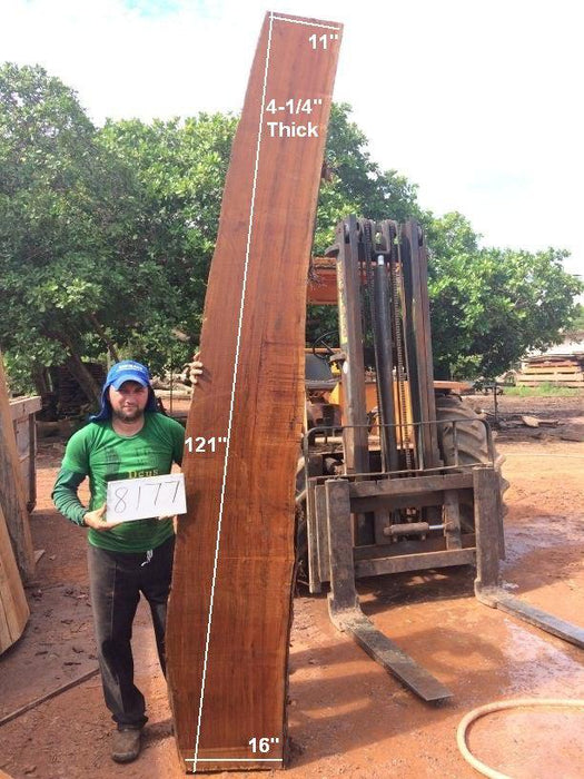 "Ipe / Brazilian Walnut- 4-1/4"" x 11"" to 16"" x 121"" - Big Wood Slabs"