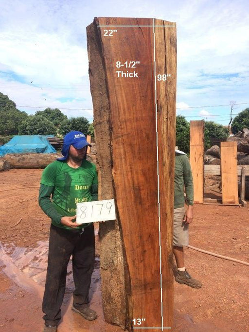 "Fava Timborana #8179 - 8-1/2"" x 13"" to 22"" x 98"" FREE SHIPPING within the Contiguous US. - Big Wood Slabs"
