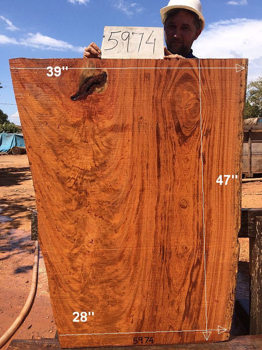 "Angelim Pedra #5974 - 2-1/2"" x 28"" to 39"" x 47"" FREE SHIPPING within the Contiguous US. - Big Wood Slabs"