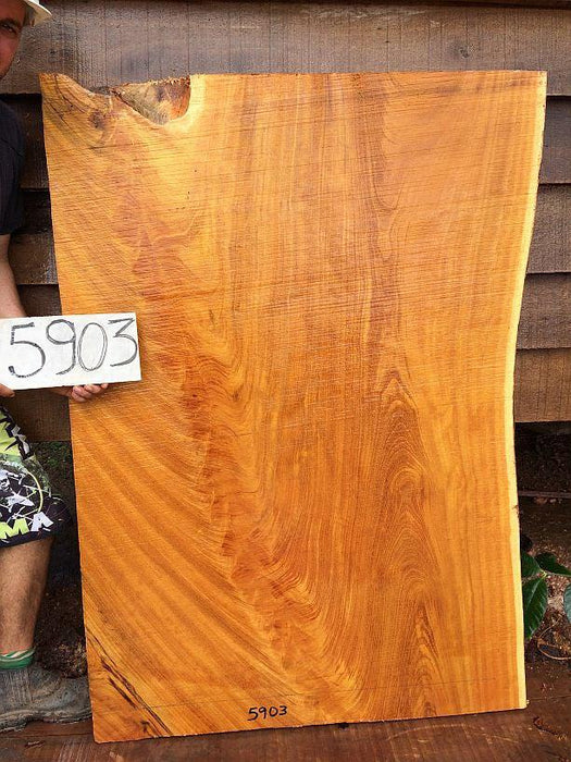 "Tatajuba - 2 1/2"" x 38"" to 39"" x 59"" - Big Wood Slabs"