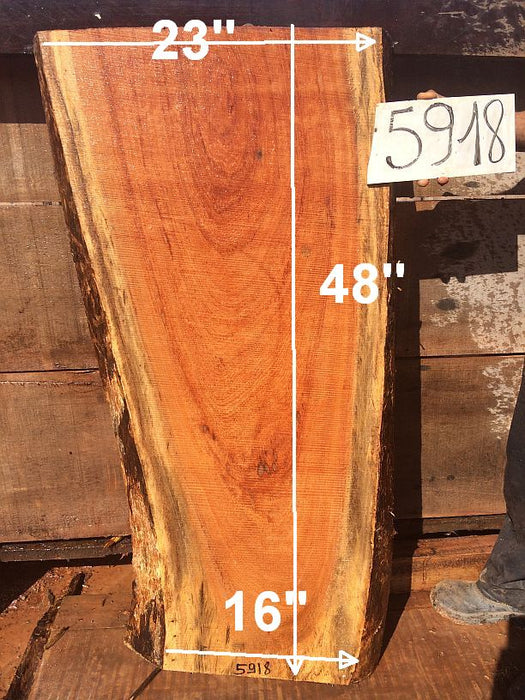 "Angelim Pedra #5918 - 2-1/2"" x 16"" to 23"" x 48"" - Big Wood Slabs"