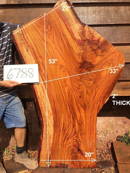 "Jatoba / Brazilian Cherry #6788- 2"" x 20"" to 33"" x 53"" FREE SHIPPING within the Contiguous US. - Big Wood Slabs"