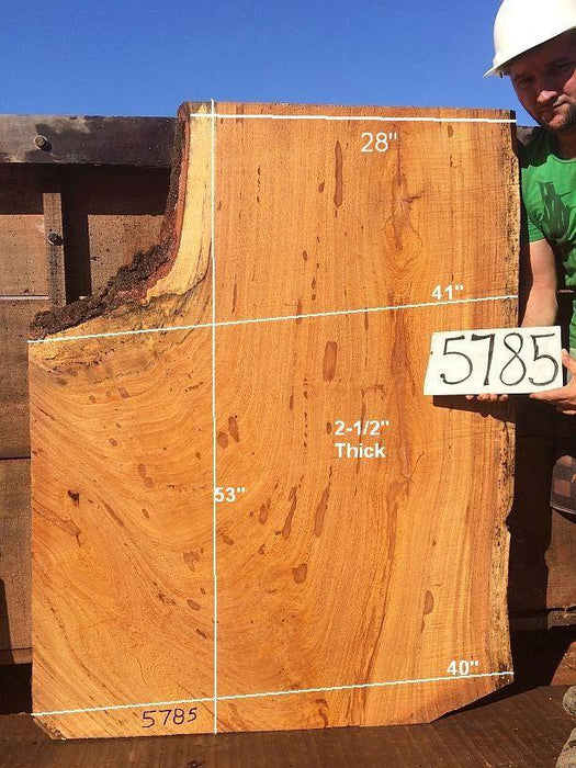 "Angelim Pedra #5785 - 2-1/2"" x 28"" to 41"" x 53"" FREE SHIPPING within the Contiguous US. - Big Wood Slabs"