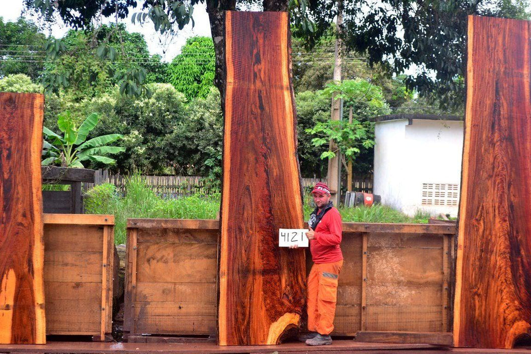 "Goncalo Alves / Tigerwood #4121- 2-1/4"" x 27"" to 36"" x 139"" FREE SHIPPING within the Contiguous US. - Big Wood Slabs"